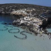 Flashmob di Amnesty International a Lampedusa
