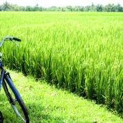 3. Bicicletta, foto di Marc-oh1, via flickr
