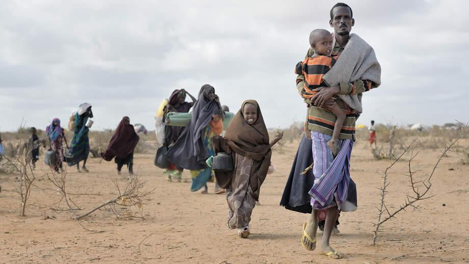 donate-refugees-920-1599