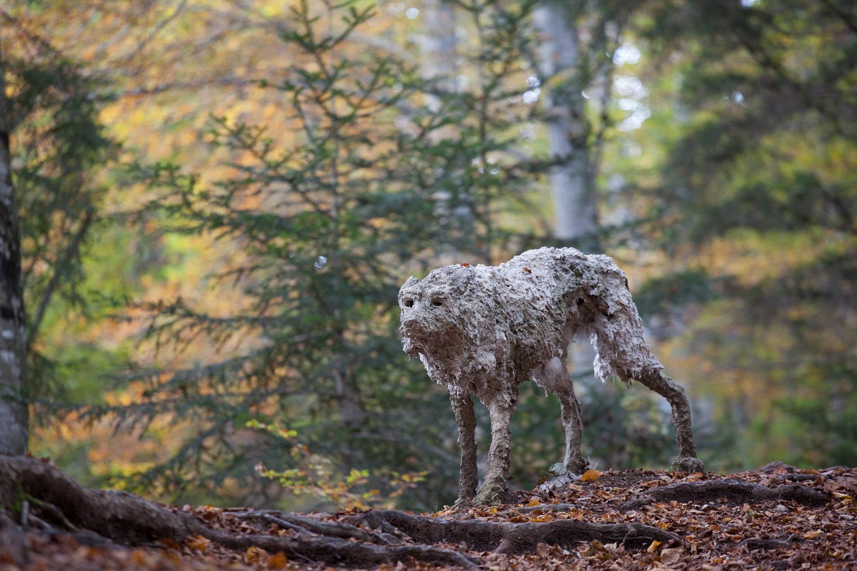 Sally Matthews Lupi Copyright Arte Sella photo Giacomo Bianchi