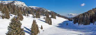 Tra divertimento e natura: un soggiorno in Trentino Alto Adige - ITACA