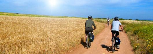 cicloturismo_bologna_itaca-Turismo Sostenibile
