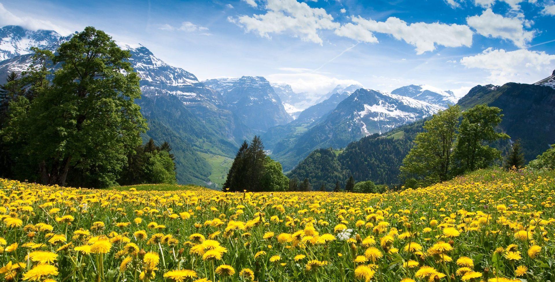 Risultati immagini per immagini primavera montagna