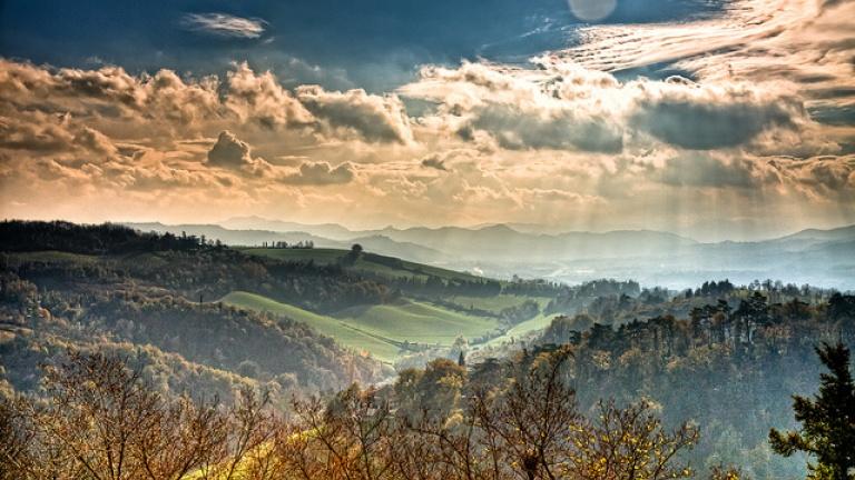 690-colli-di-bologna-calcanchi-sole-alberi-abeti