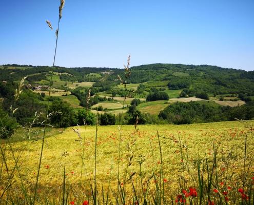 Itaca | Tappa Pavia e Oltrepò pavese 2021 | Foto rappresentativa della tappa