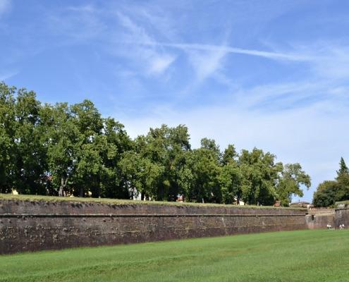 Piana di Lucca
