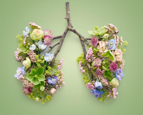 Itacà | Il respiro del benessere