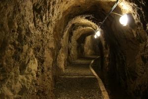 Vistia al museo Cast Sestri Levante